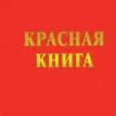 Даниил_Пигалёв