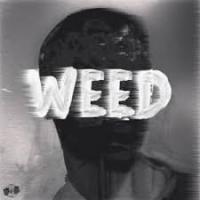 Jon_Weed